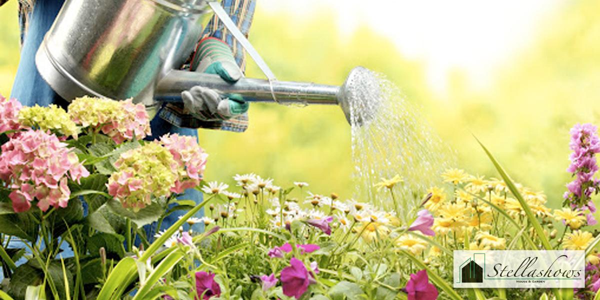 เคล็ดลับการดูแลต้นไม้ดอกไม้ให้สวยงาม