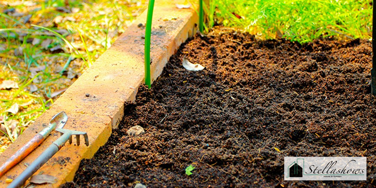5 เคล็ดลับปลูกต้นไม้แล้ววัชพืชไม่ขึ้นตาม