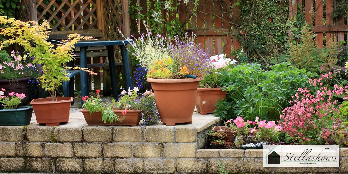 จัดสวนหย่อมให้มีสีสันสดใส