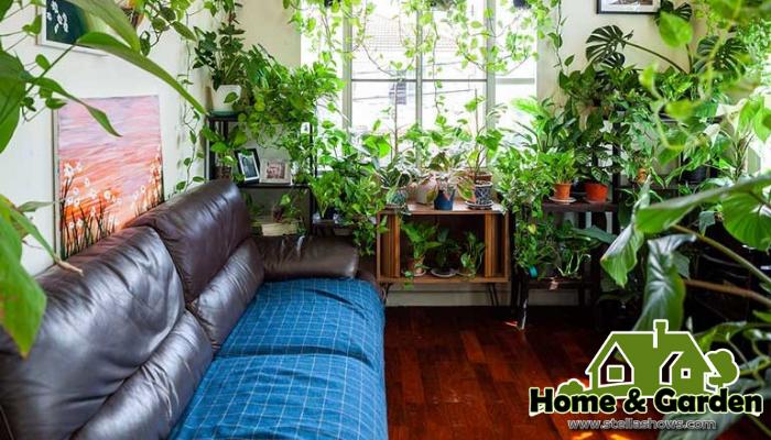รวม 6 ไอเดียการปลูกไม้เลื้อยบนกำแพงให้ดูสวยงาม การปลูกไม้เลื้อยภายในบ้านเป็นการตกแต่งบ้านในแบบหนึ่งที่จะช่วยทำให้บ้านของเราดูสวยงาม